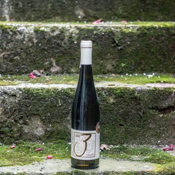 Wines from Michał Pajdosz