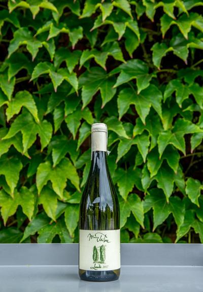 Wino Winnica Miłosz Lauda 2017