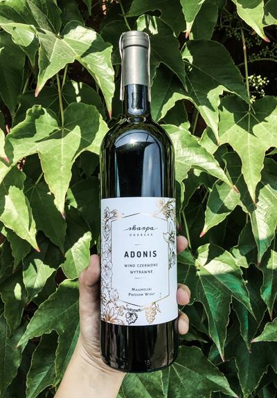 Wino Skarpa Dobrska Adonis 2016