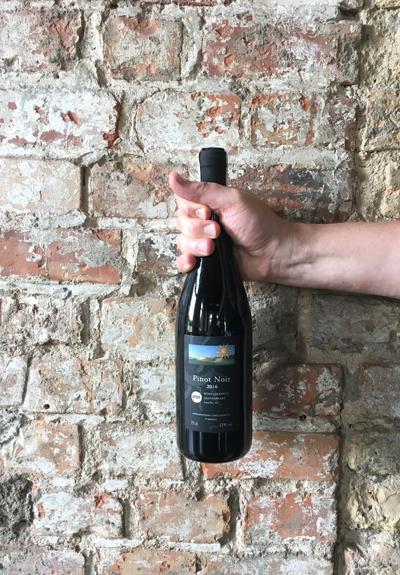 Wino Winnice Wzgórz Trzebnickich Pinot Noir 2016