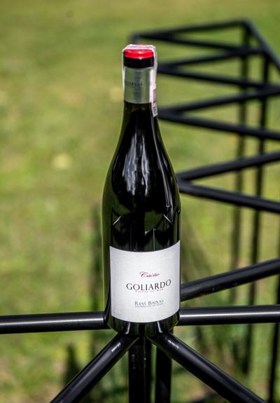 Wino Forjas del Salnés Goliardo Tintos de Mar Caiño 2016