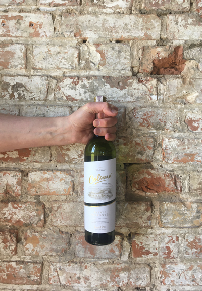 Wino Colome Estate Torrontes 2018