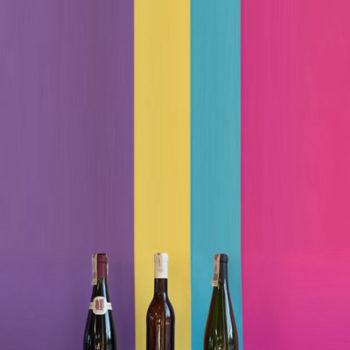 Wino wina polskie pakiet 2
