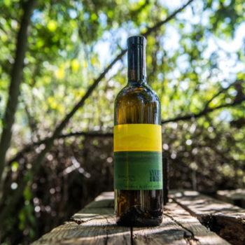 Wino Sepp Muster Sauvignon vom Opok 2018