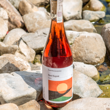 Wino Kamil Barczentewicz Regent Rose 2019