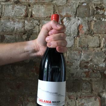 Wino Dominio do Bibei Lalama 2016